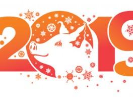 Поздравляем с наступающим Новым Годом 2019!